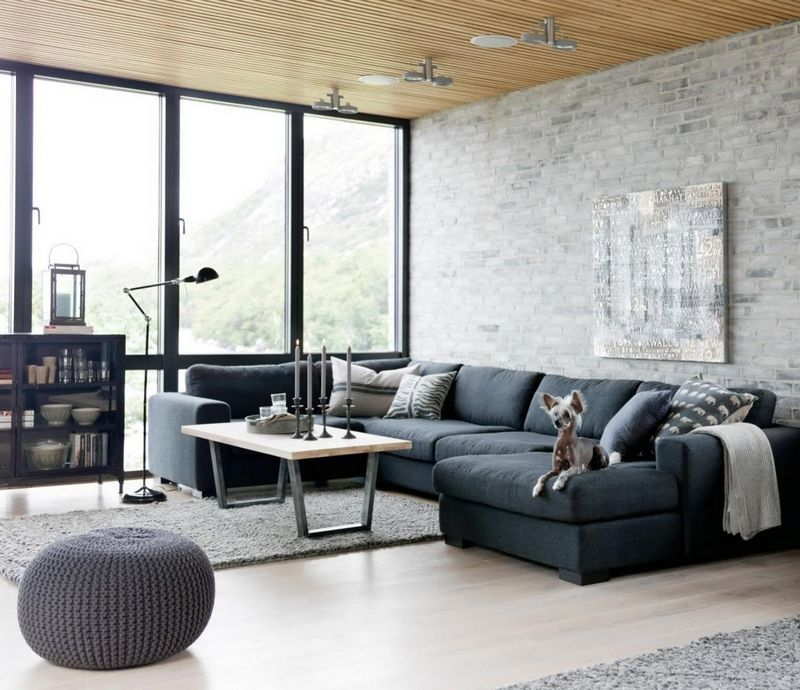 Perfect Living Room Charcoal Grey Sofa Grey Dog White Cushion White Blanket Square  Black Glass Cabinet Square White Wooden Table Black Plastic Chair Black  Leather ...