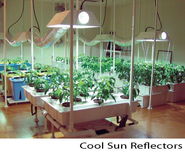 Indoor Vegetable Farm Highlighting Cool Sun Reflectors By