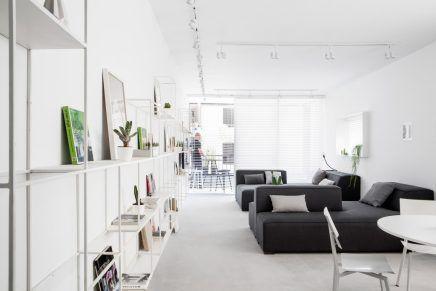 Modern Interieur Wit : Smal lang appartement met een wit modern interieur shelves