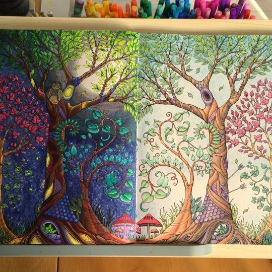 Johanna Basford Colouring Gallery Enchanted Forest Coloring Book,  Johanna Basford Coloring Book, Johanna Basford Coloring