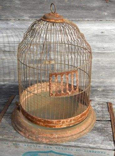 best 25 brd cage decoraton deas on pnterest.htm photo of vintage hanging wire birdcage for feather birds  shabby  hanging wire birdcage for feather birds
