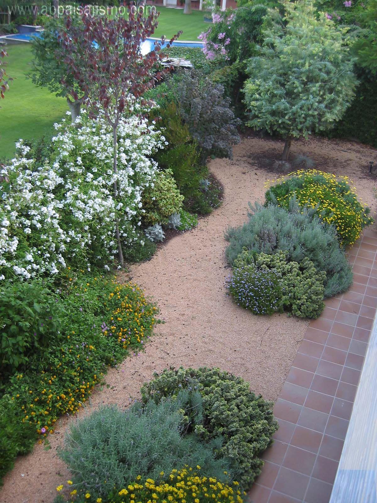 Jard n de grava sustentable euryops pectinatus plumbago - Gravas para jardin ...