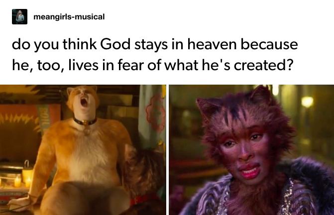 Cats (2019) in 2020 Cat movie, Movie memes, Humor
