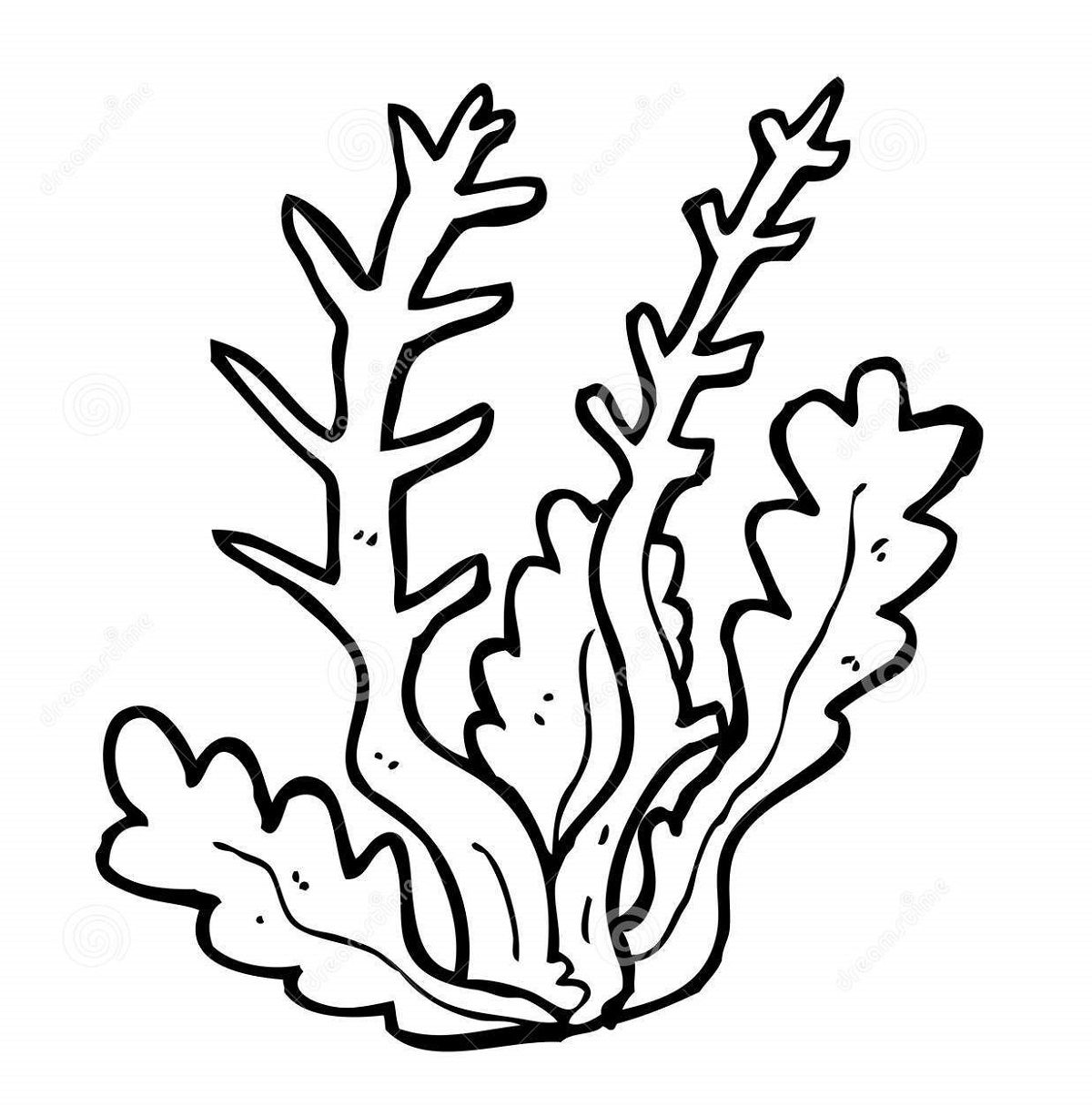 Seaweed Coral Coloring Pages For Kids