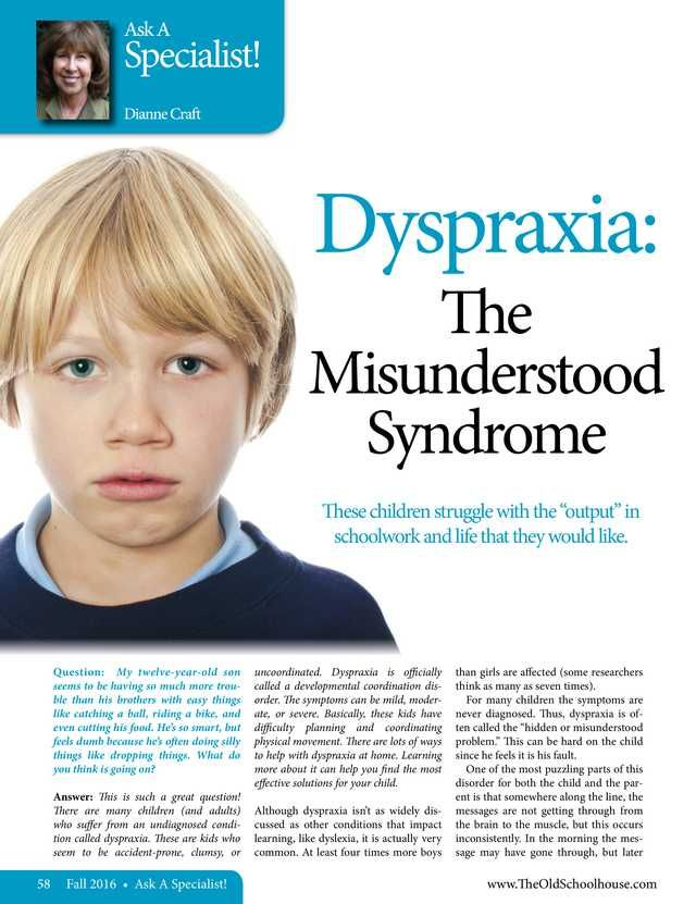 Dyspraxia The Misunderstood Syndrome By Dianne Craft The Old Schoolhouse Magazine Fall 2016 Page 58 59 Dyspraxia Activities Dyspraxia Homeschool