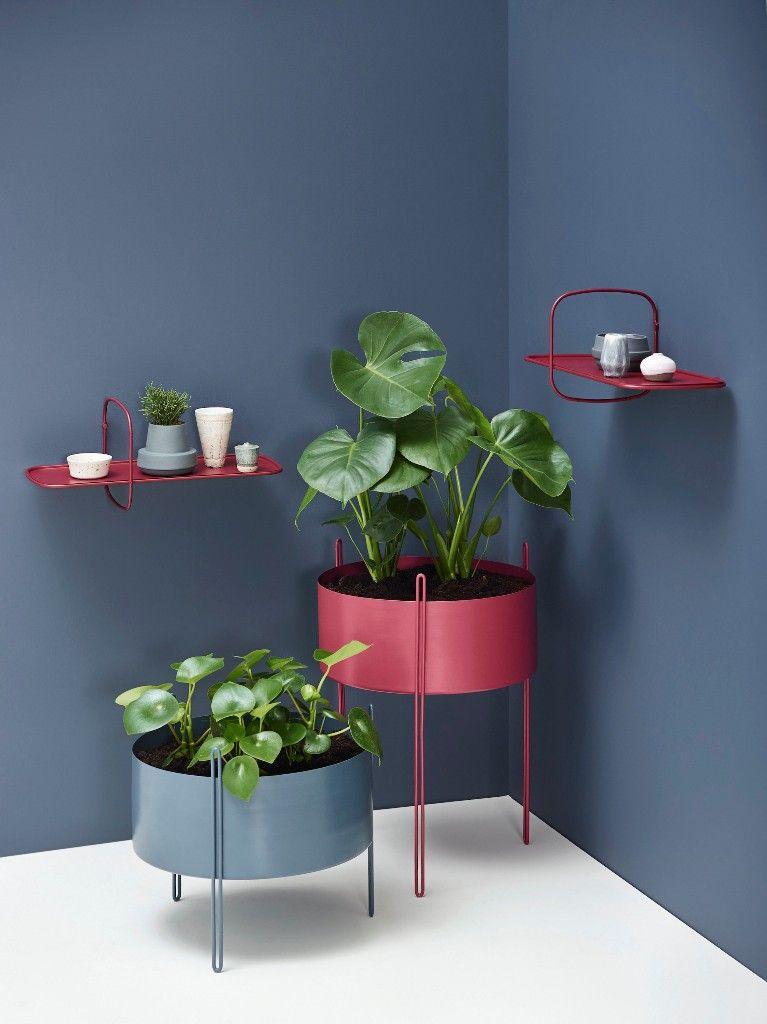 /bac-plantes-interieur-design/bac-plantes-interieur-design-28