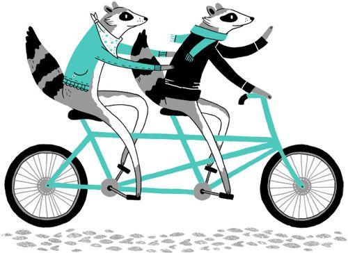 Illustration by Alyssa Nassner (via Mint) #AlyssaNassner #tandem #bike #raccoon #turquoise