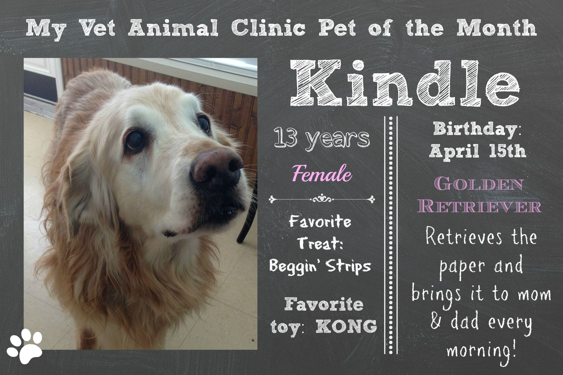 Our First Pet Of The Month Kindle March 2014 Pet Clinic Vets