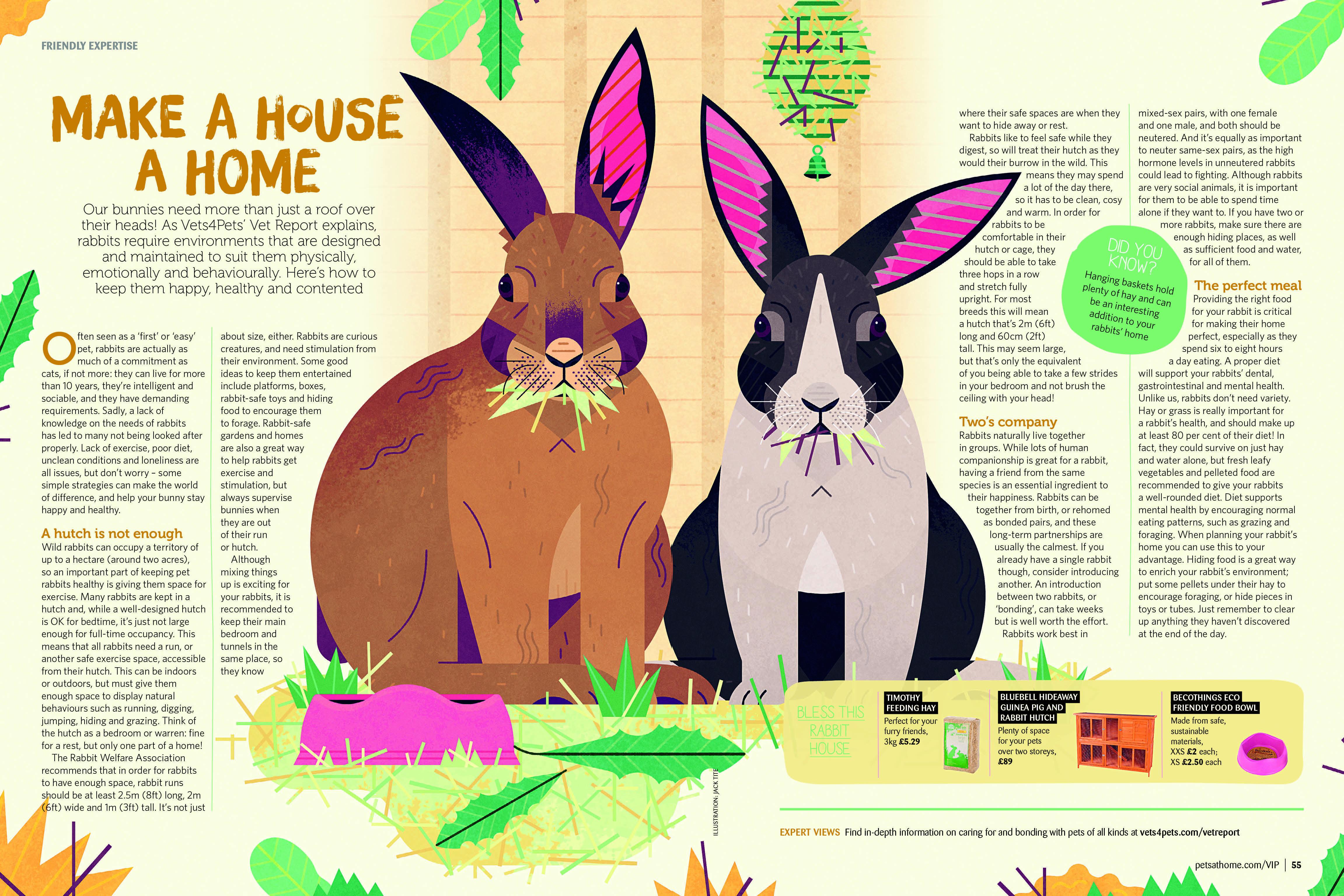 Great Illustration For Petsathome By Jack Tite Illustration Design Art Editorial Print Designstudio Freelance Ag Illustration Vector Art Rabbit Head