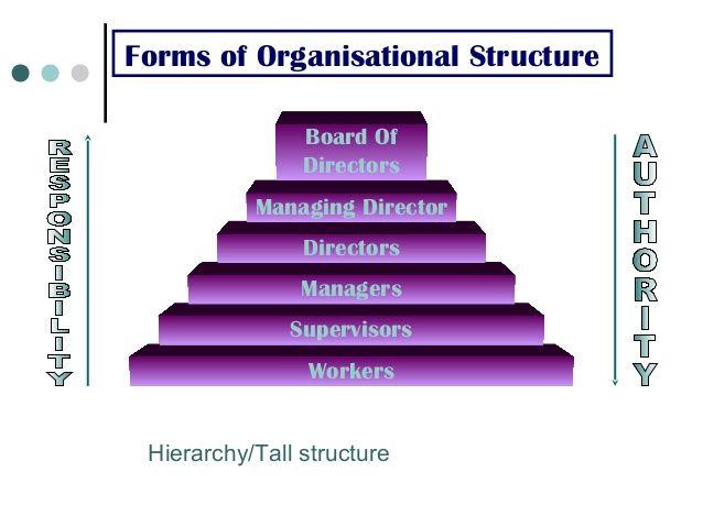 Hierarchy  Flat  Matrix; 5 Forms of Organisational Structure - ics organizational chart