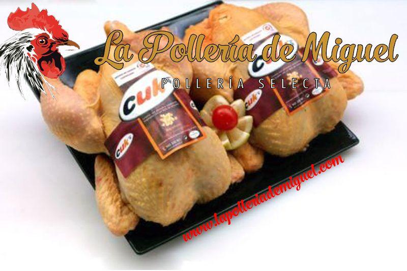 Pollo De Corral Pollo De Corral Pollo Y Pollito Amarillo