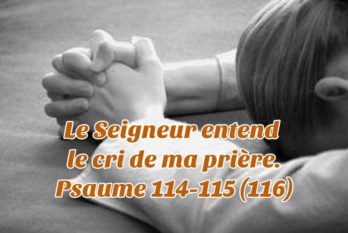 Le Seigneur entend le cri de ma prière. Psaume 114-115 (116) | Psaumes, Le  cri, Seigneur