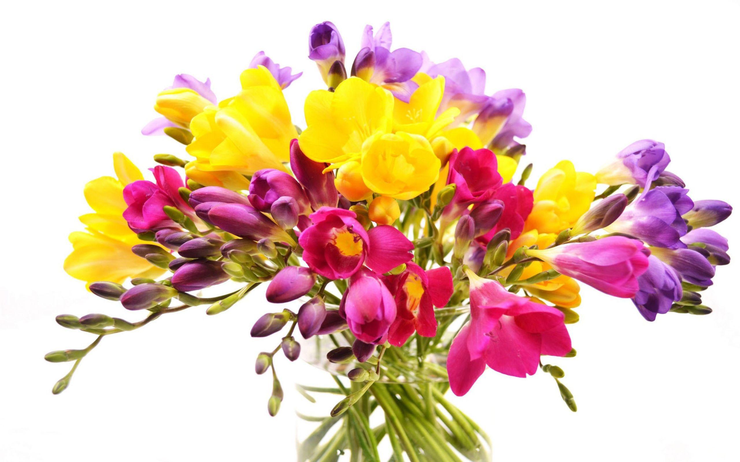 21 21 freesia flowersbouquet izmirmasajfo Gallery