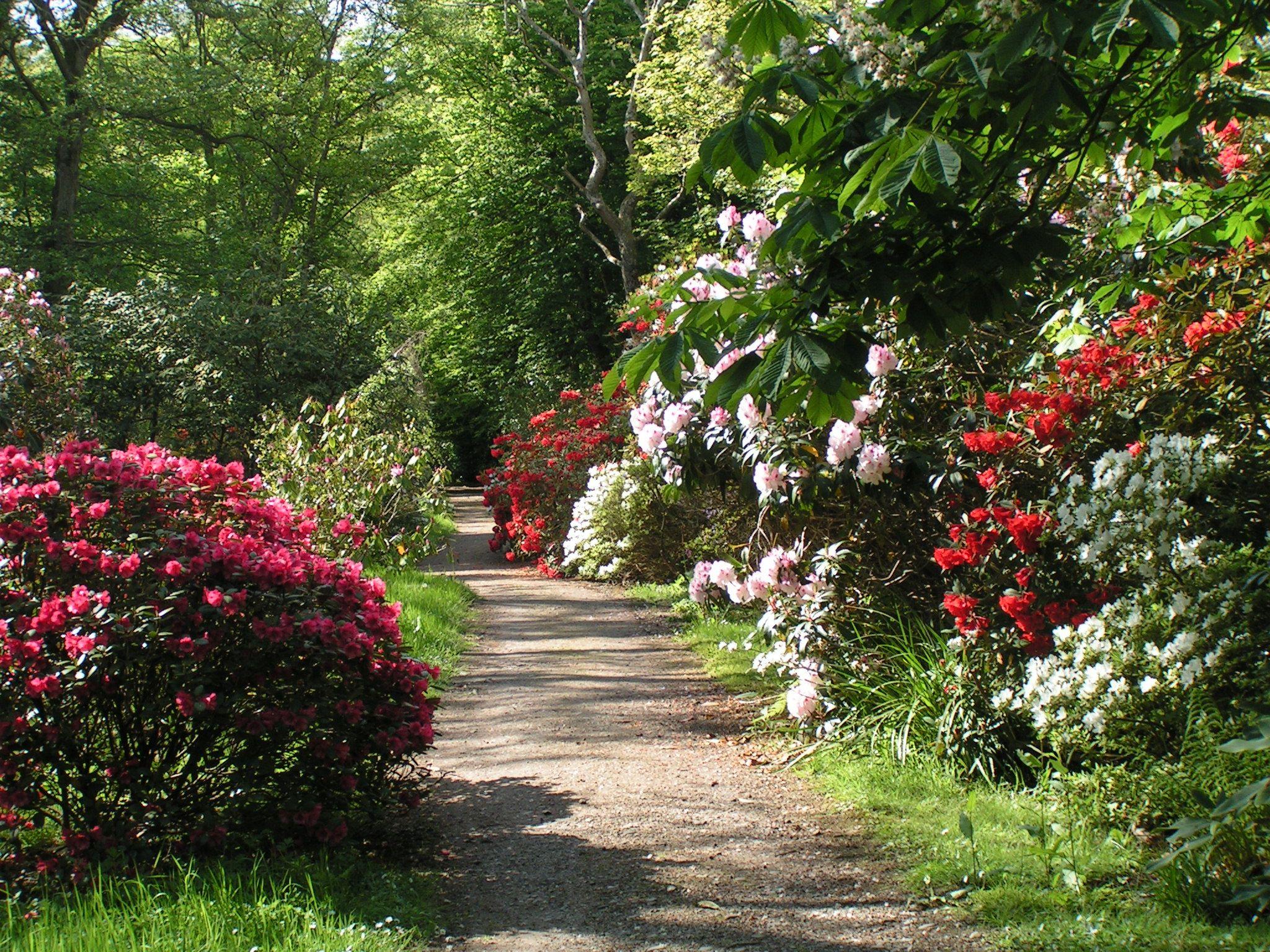 16 best ideas about Garden Paths on Pinterest Gardens Preserve