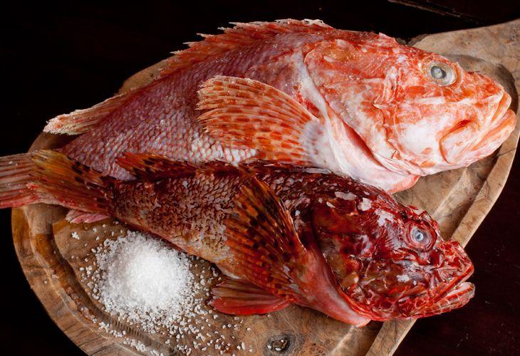 Culinaria Estranha 8 Pratos Exoticos E Ate Mesmo Venenosos Com