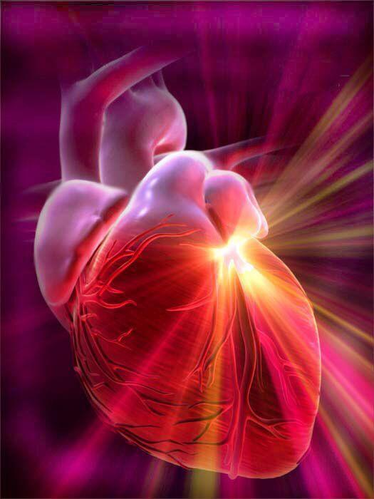 Cual es la frecuencia cardiaca para quemar grasa