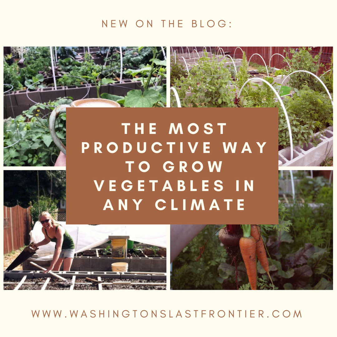 The Most Productive Way To Grow Vegetables in Any Climate // garden ...