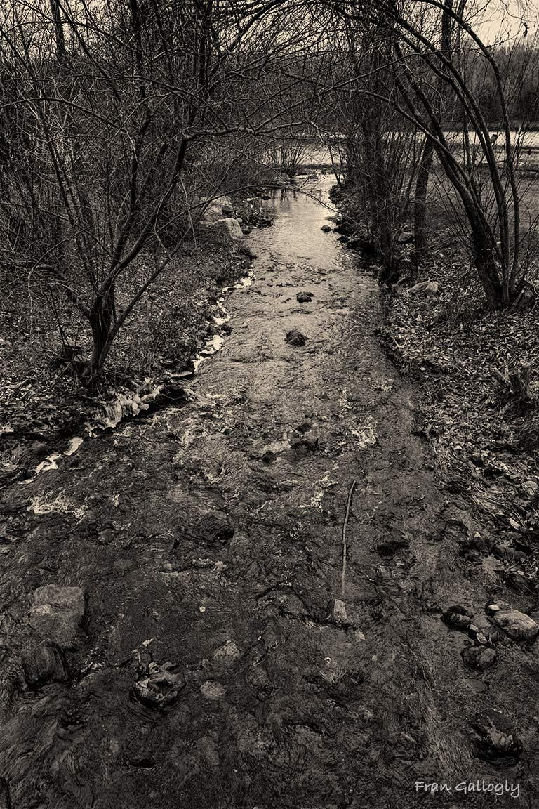 Shallow creek, Great Hollow Lake, Monroe