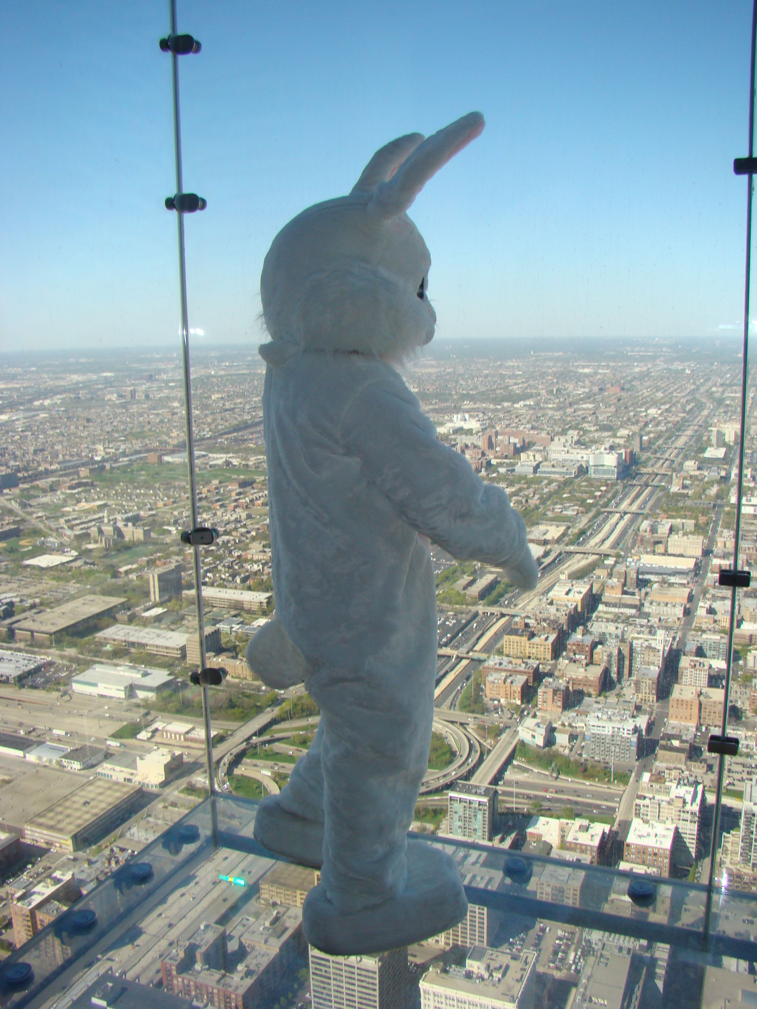 Skydeck Chicago Private Events Skydeck Chicago Chicago Hotels Chicago