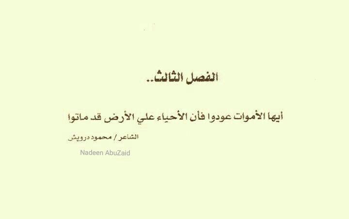من كتاب باريس لا تعرف الحب Calligraphy Arabic Calligraphy
