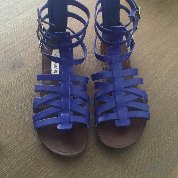 Steve Madden Gladiator Sandals Blue leather gladiator sandals with zipper in the back. Gold small buckles on the side, shoe is in good condition! Size 7 women's. Steve Madden Shoes Sandals