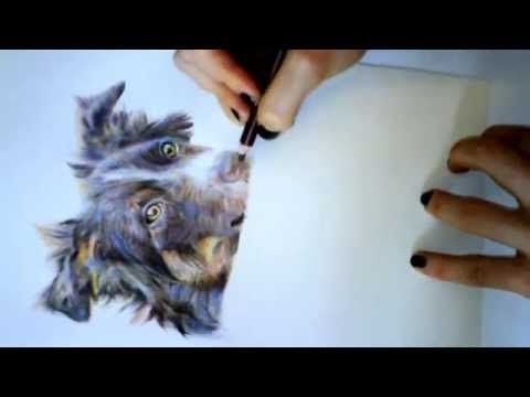 derwent color pencil - YouTube