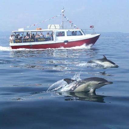 Fowey Meva Ferry Cornwall