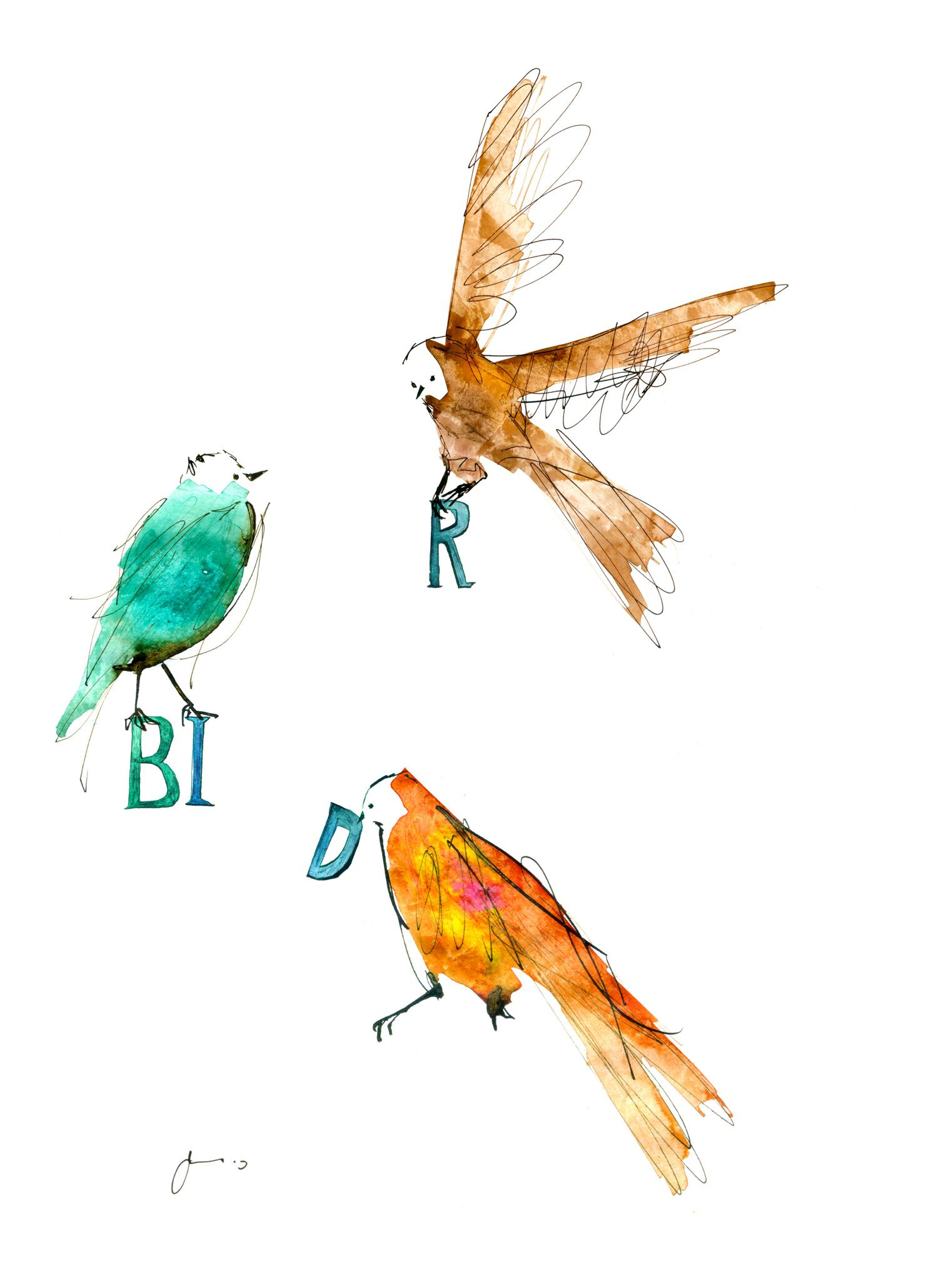 イラスト #鳥 #アート #ドローイング #インク #ペン #シンプル #動物