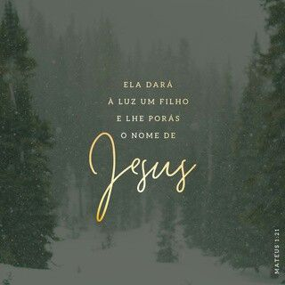 Youversion Bible Natal Frases