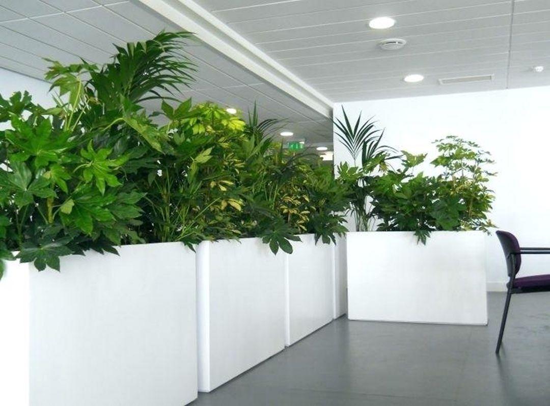 20 Best Ideas For Designing Creative And Modern Indoor Garden Large Indoor Planters Indoor Plant Pots Indoor Planters