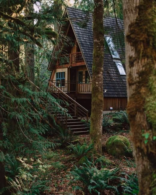 A-frame house designs revive the old trends in architecture create beautiful and charming homes, cottages, and cabins in the woods