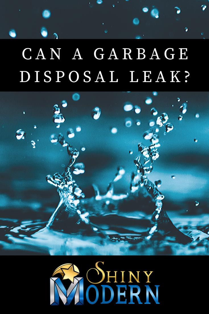 Can A Garbage Disposal Leak Garbage Disposal Garbage Leaks