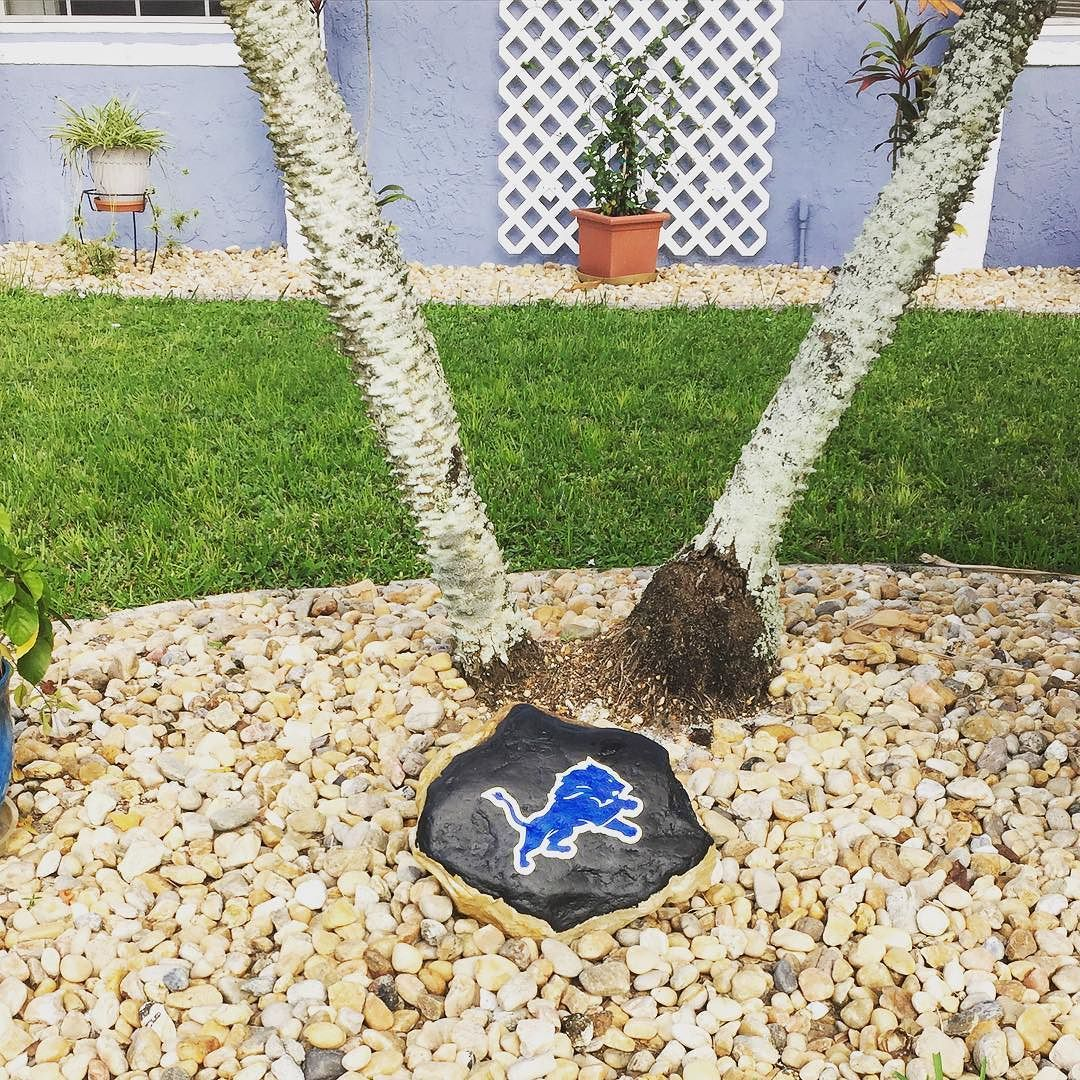 The #lionsrock is outside for the first time and the #lions won their first game! Now they need to have a #winning #streak to make something out of this #season #nfl #firstwin #detroit #detroitlions #lionsfanforlife #lionsfan @detroitlionsnfl #goodluck