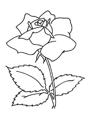 Ausmalbild Rosen Zum Ausmalen Ausmalbilder Malvorlagen Kindergarten Blumen Rosen Mandala Coloring Books Coloring Books Rose Coloring Pages