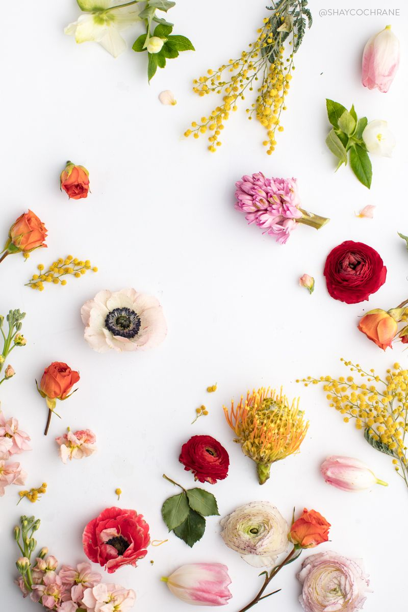 Bright Floral Styled Stock Images For Your Instagram Feed From Social Squares Flower Phone Wallpaper Flower Wallpaper Flower Aesthetic