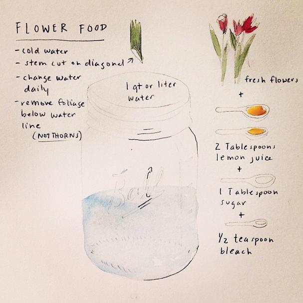Pin By Mariesd On Outdoor Love Flower Food Diy Flower Food Flowers