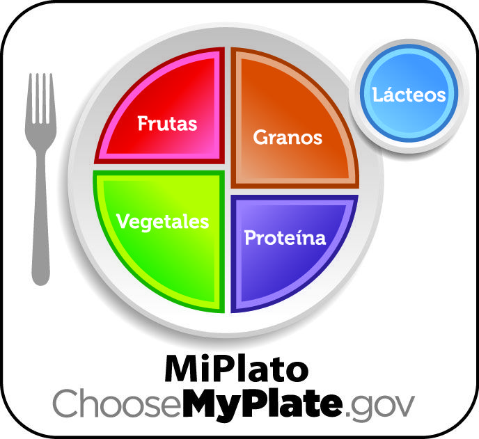Image result for my plate template bmi project pinterest my image result for my plate template pronofoot35fo Choice Image