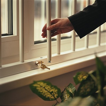 Elegant Basement Security Windows