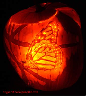 our favorite bestest carved pumpkin picks from 2006 butterfly rh pinterest com butterfly pumpkin carving ideas butterfly pumpkin carving templates free