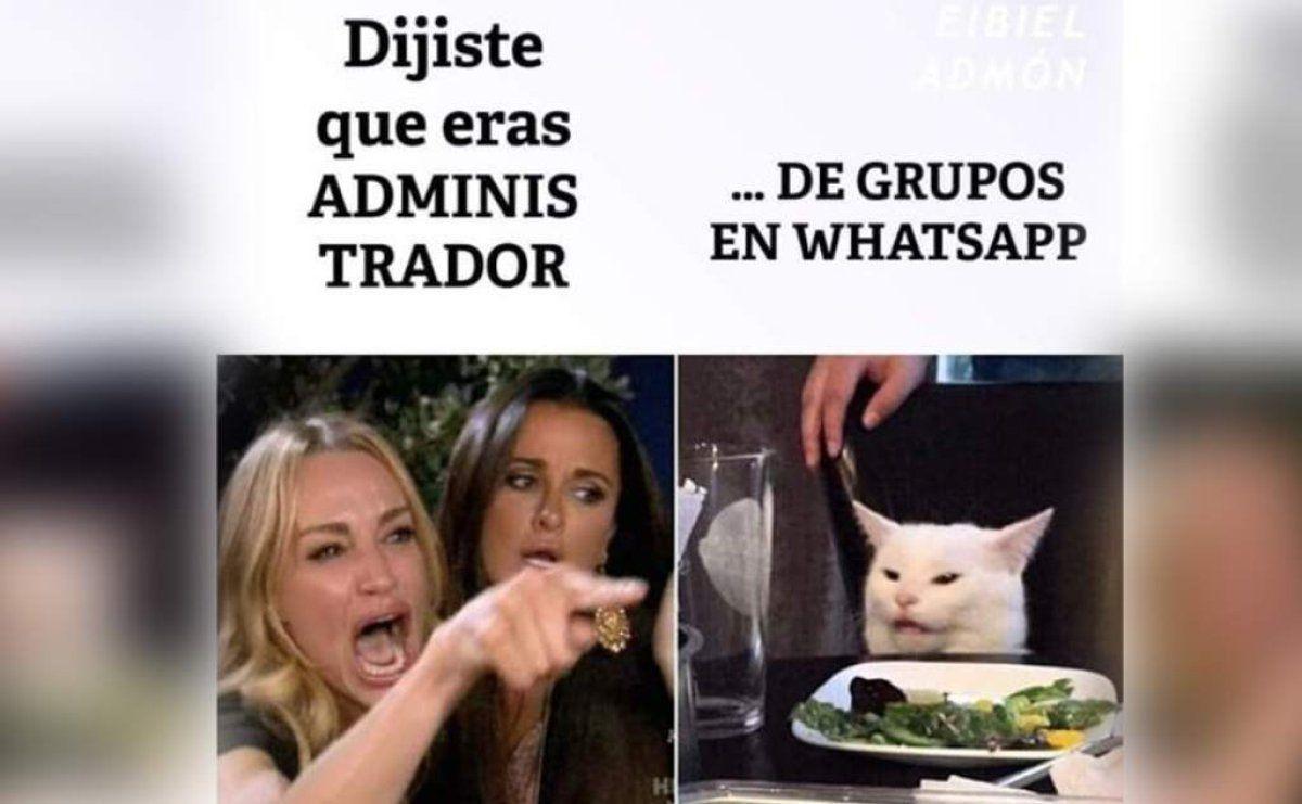 Los mejores memes del gato en la mesa y la mujer que le reclama