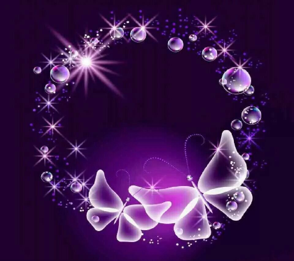 white butterfly on purple background purple a favorite color white butterfly on purple background talk purplethe color