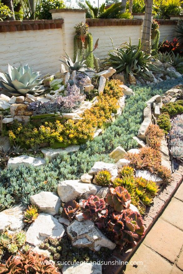 Sherman Gardens Succulent Tapestry and Courtyard is part of Succulent Rock garden - A beautiful succulent tapestry at the Sherman Library and Gardens