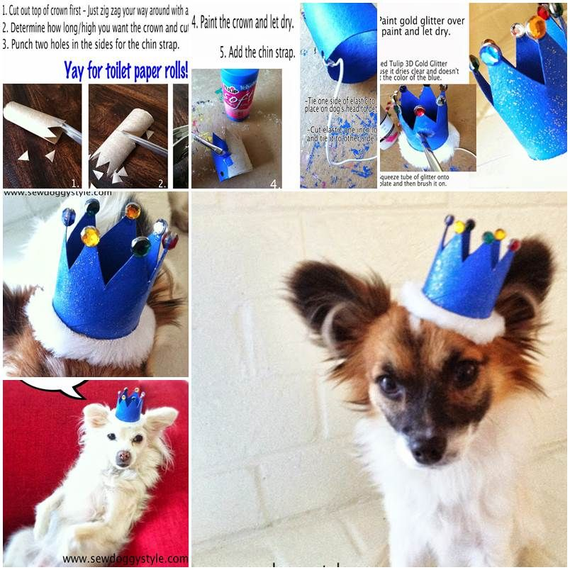 DIY Mini Dog Crown