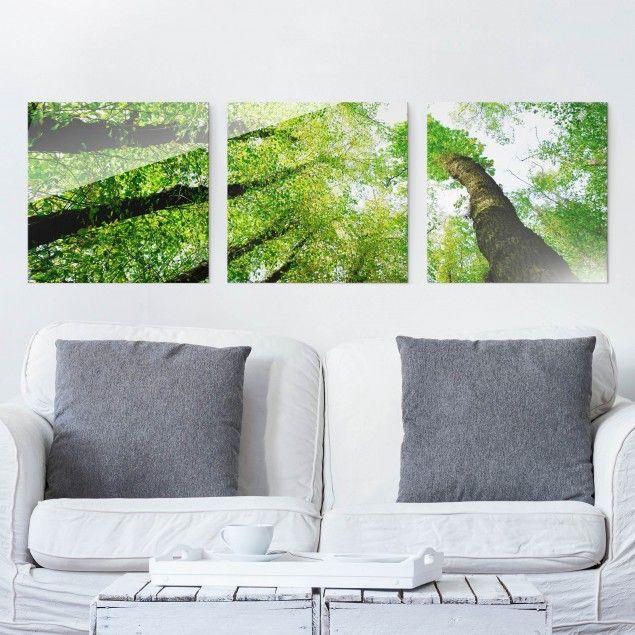 Glasbild Mehrteilig Baume Des Lebens 3 Teilig Waldbild Glas