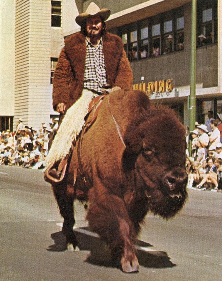 328fc27b Yo dawg, I heard you like buffalo, so here's a guy on a buffalo ...