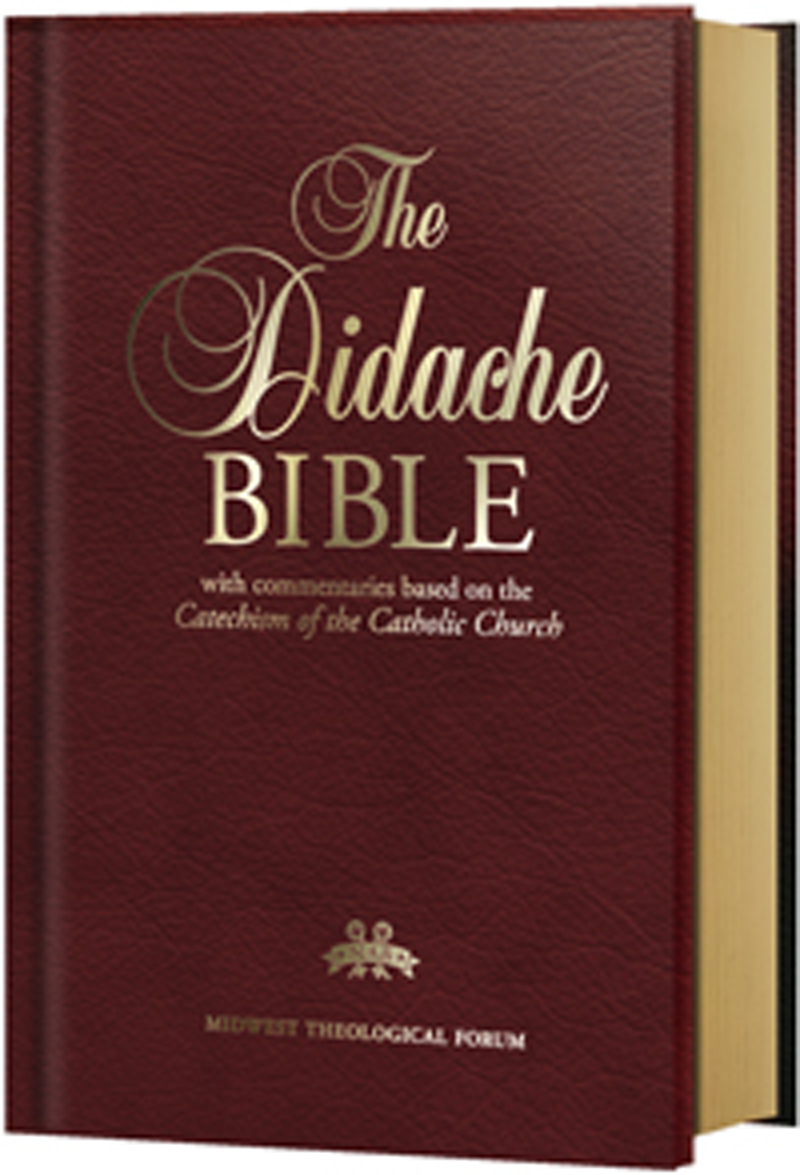 Didache Bible Nabre With Introduction And Footnote From The Book Addict Translations New Revised Standard Version Catholic Edition Pdf Free Download
