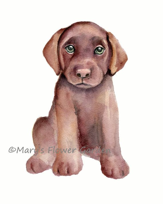 Puppy #Nursery set 8 X 10 Dog Nursery Art by Marysflowergarden