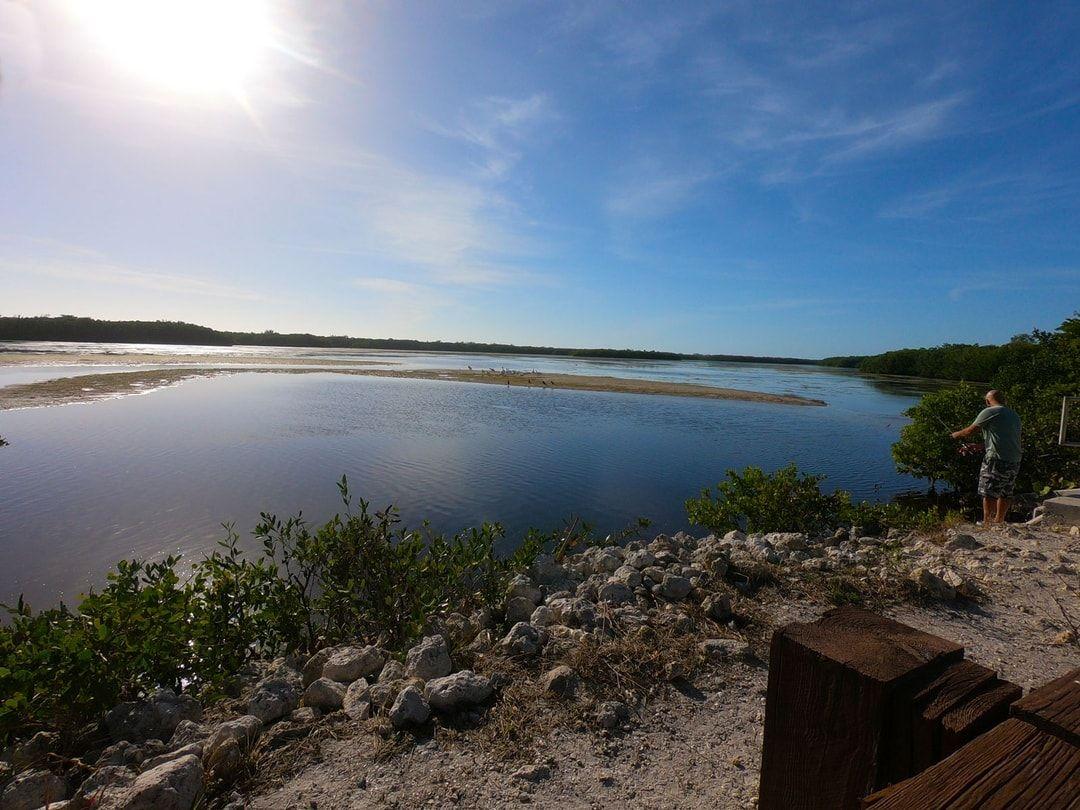 Sanibel Island In Search of Summer & Seashells / Florida