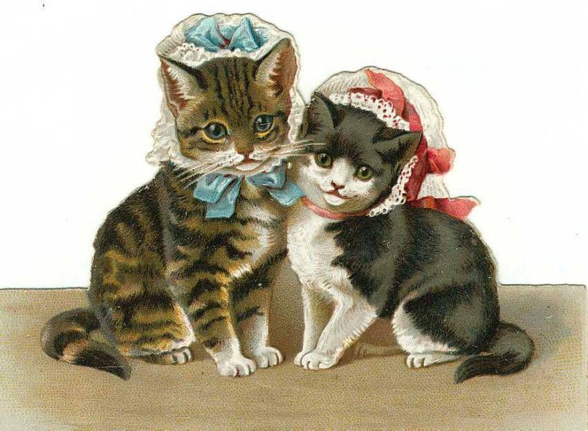 фасоны парных кошки ретро картинки сборная канады