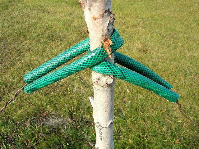 6 Creative Ways to Recycle Your Garden Hose | Garden hose ...